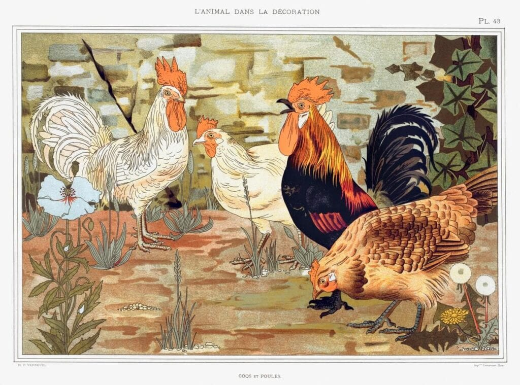 Coqs et poules from L'animal dans la décoration (1897) illustrated by Maurice Pillard Verneuil. Original from the The New York Public Library.