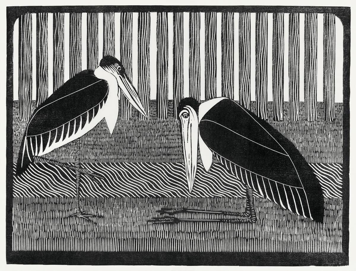uccelli migranti