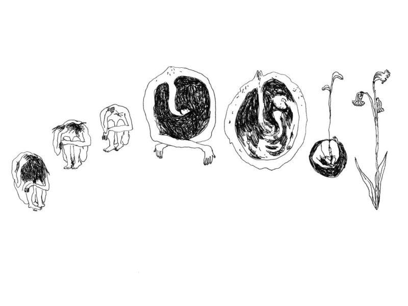Irene Fattori illustrazione