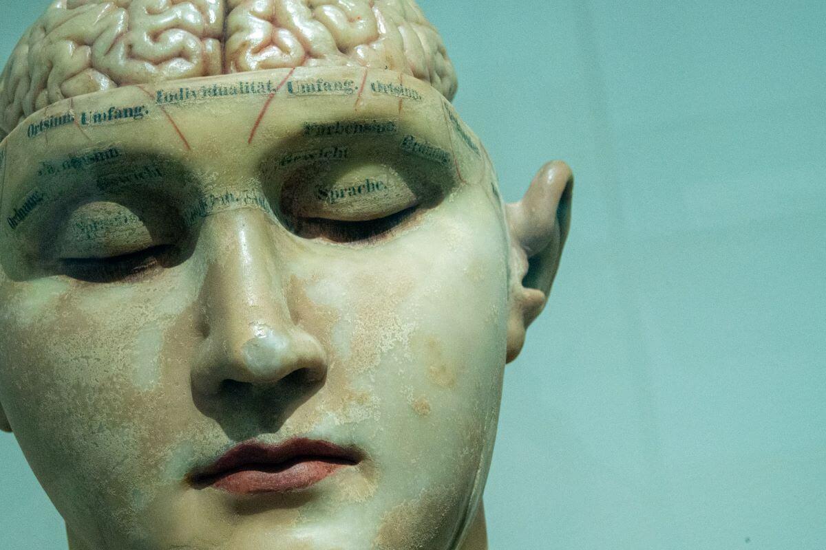 uomo e il suo cervello