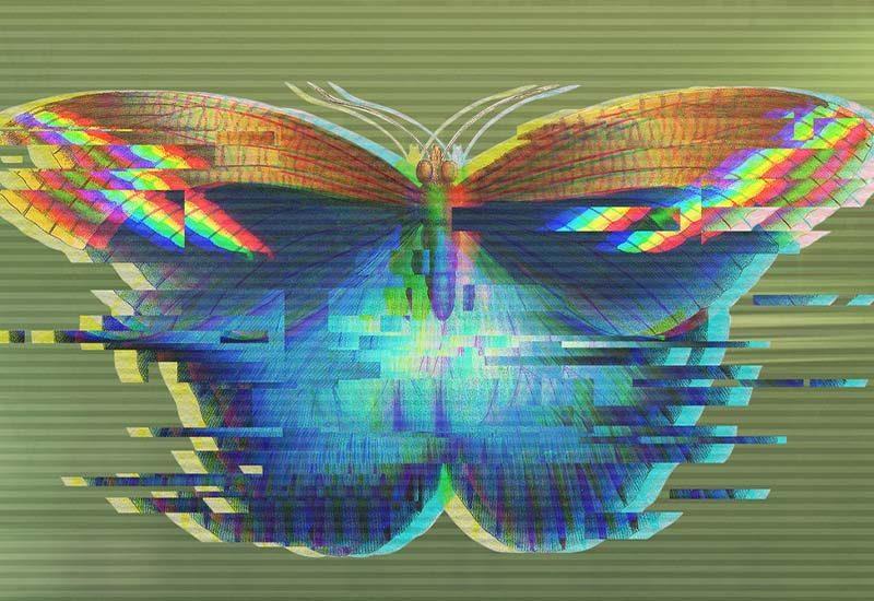 farfalla glitch