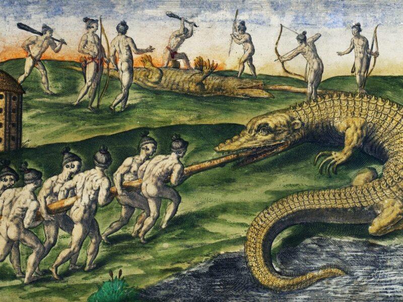 uomini contro coccodrilli