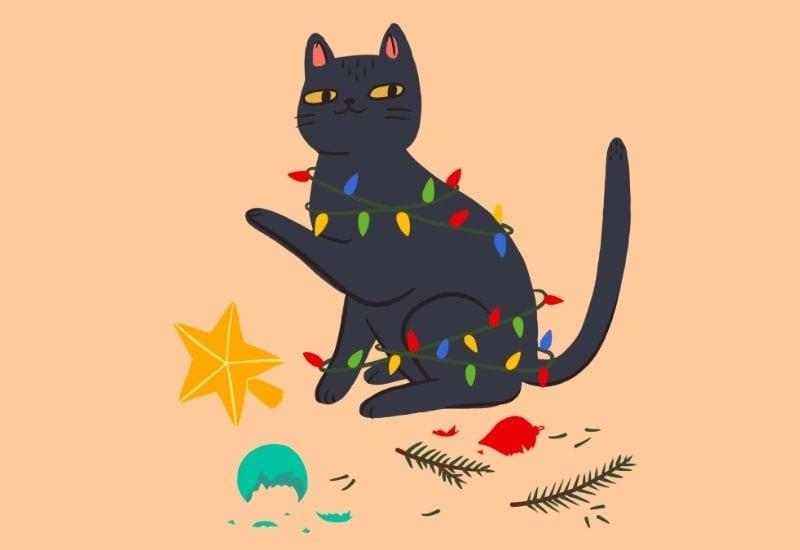 Gatto Natale