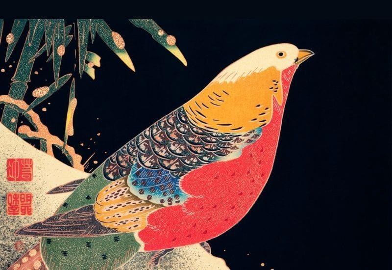 uccello migrante