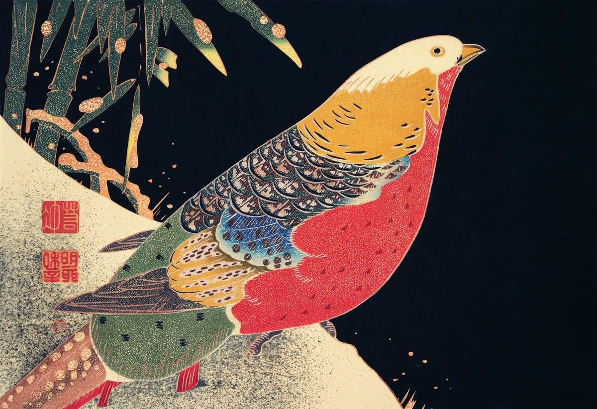 uccello mgiratorio