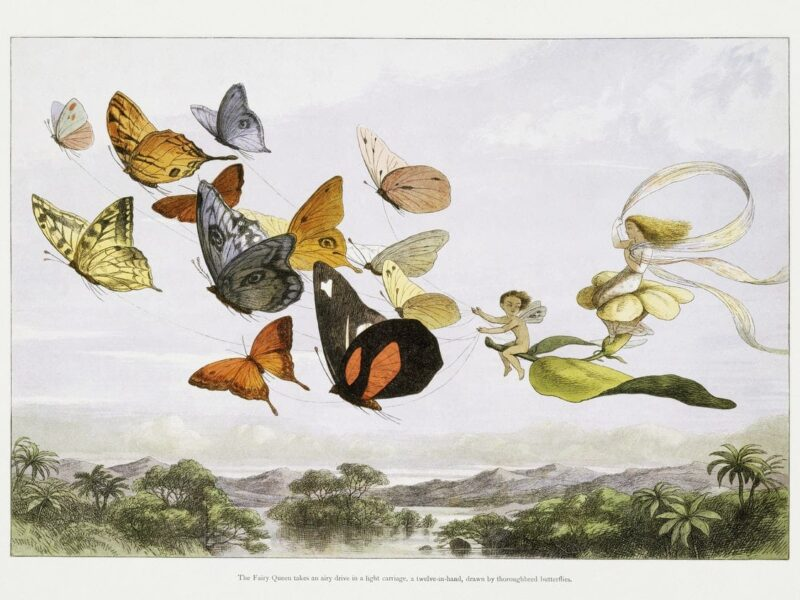 The Fairy Queen Takes an Airy Drive in a Light Carriage, a Twelve–in–hand, drawn by Thoroughbred Butterflies (1870) by Richard Doyle.