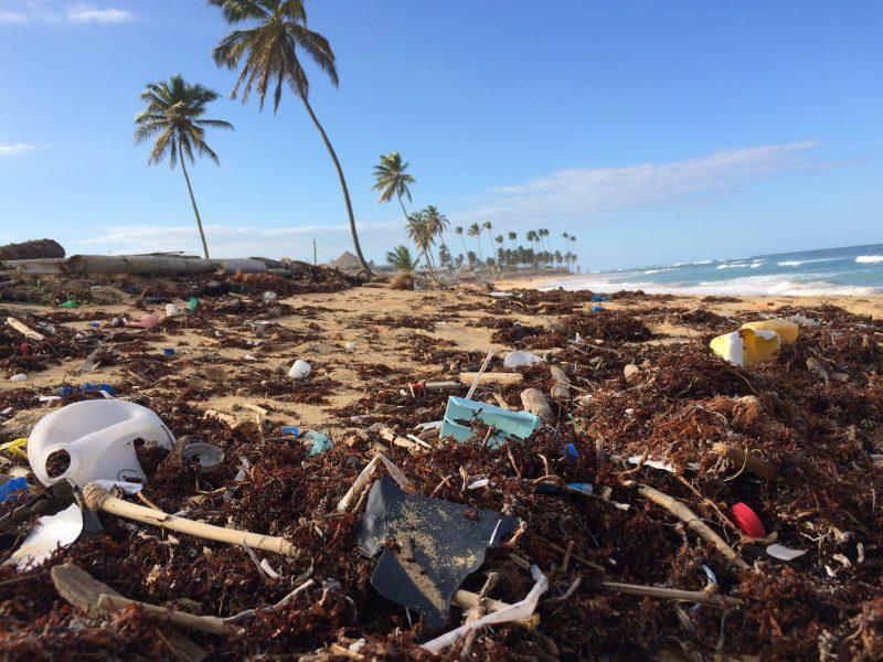 Spiaggia e inquinamento