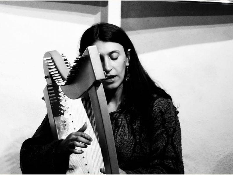 Elisa suona l'arpa